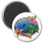 Surfing Hawaii Fridge Magnets