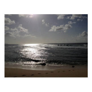 Surfing in Hawaii Postcard