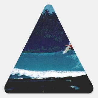 surfing indonesia nias air reverse blowtail triangle sticker