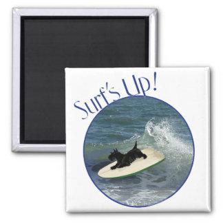Surfing Scottish Terrier Refrigerator Magnets