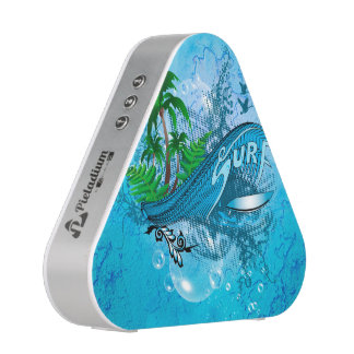 Surfing, surfboard with palm speaker
