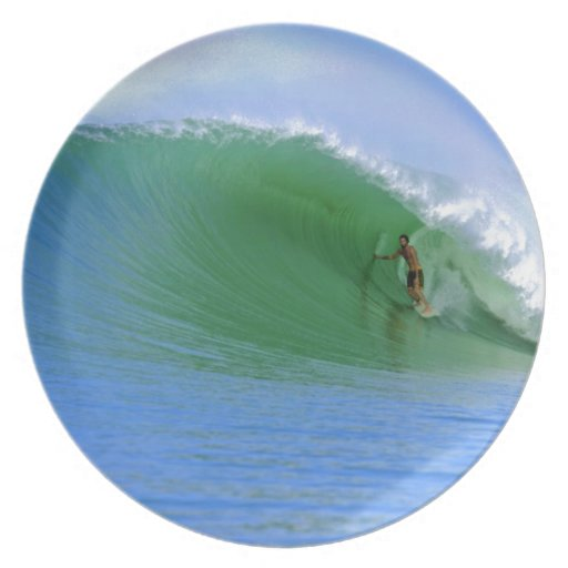 Surfing tropical island wave party plate