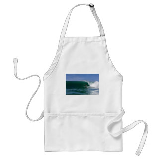 Surfing tropical ocean paradise waves apron