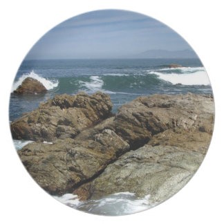 Surf's Up Plate