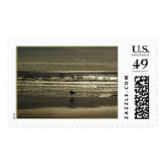 Surf's Up Stamps