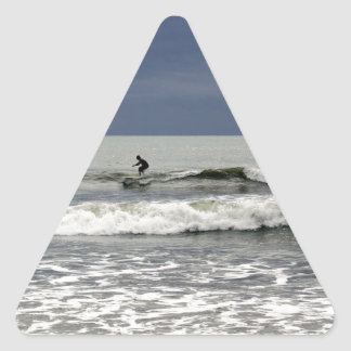 Surfs Up Triangle Stickers