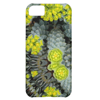 Surge May 2013 iPhone 5C Cover