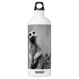 Suricate Aluminum Water Bottle