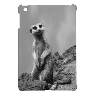 Suricate iPad Mini Coberturas