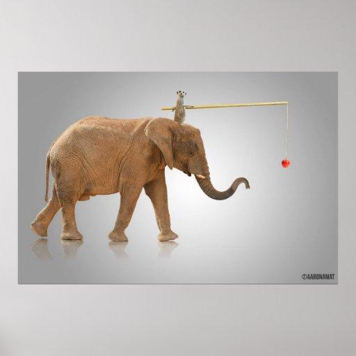 Suricato y Elefante Póster