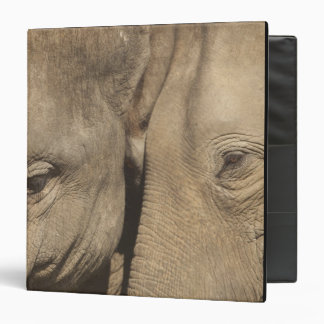 Surin Elephant Round Up, Surin Elephant Show 3 Ring Binder
