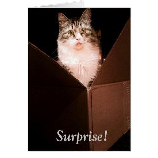 Surprise Birthday Greeting Card