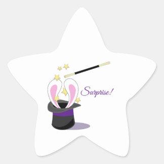 Surprise Magic Sticker
