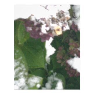 Surprise Snow Letterhead