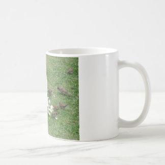 Surprise Suprise Coffee Mug