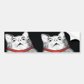 Surprised Cat Gasp Meme - Bumper Sticker