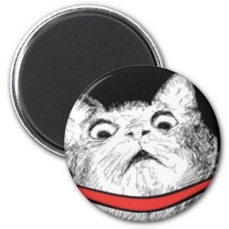 Surprised Cat Gasp Meme - Magnet