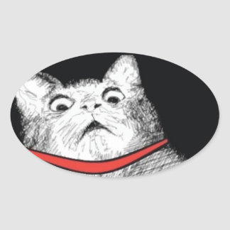 Surprised Cat Gasp Meme - Oval Stickers