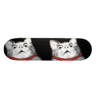 Surprised Cat Gasp Meme - Skateboard