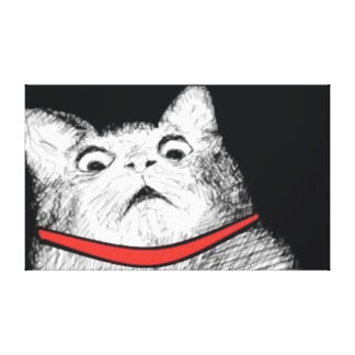 Surprised Cat Gasp Meme - Wrapped Canvas Stretched Canvas Prints
