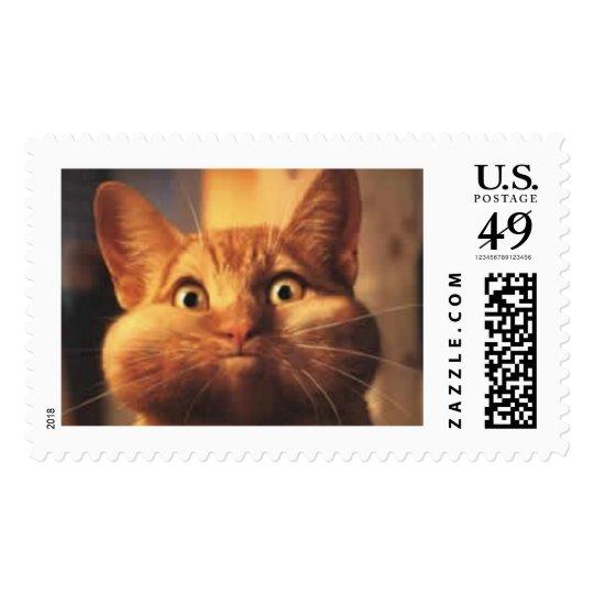 Surprised Cat Postage