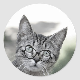 Surprised Cat with Glasses Sticker