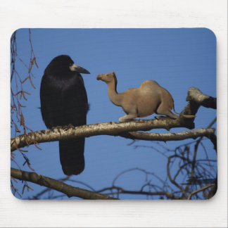 Surprised Crow Mouse Pad