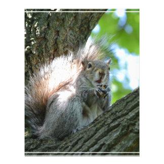 Surprised Squirrel Letterhead