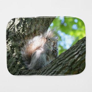Surprised Squirrel Baby Burp Cloths