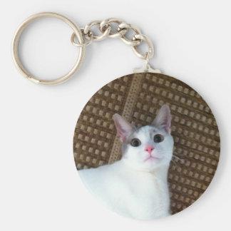 Surprised White Cat Basic Round Button Keychain