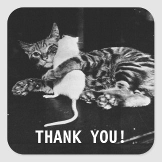 Surprising Friendship Cat and Mouse | Thank you Square Sticker