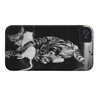 Surprising Friendship - Cat Minnie and Mike Mouse iPhone 4 Case