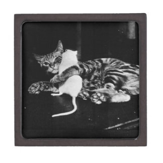 Surprising Friendship - Cat Minnie and Mike Mouse Jewelry Box