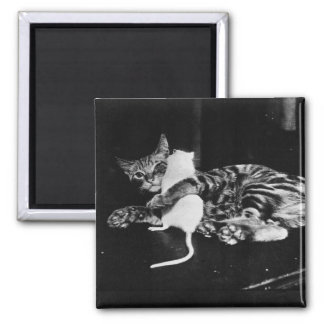 Surprising Friendship - Cat Minnie and Mike Mouse Magnet