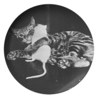 Surprising Friendship - Cat Minnie and Mike Mouse Melamine Plate