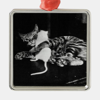 Surprising Friendship - Cat Minnie and Mike Mouse Metal Ornament