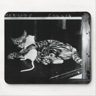 Surprising Friendship - Cat Minnie and Mike Mouse Mouse Pad
