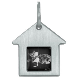 Surprising Friendship - Cat Minnie and Mike Mouse Pet ID Tag