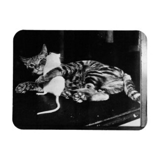 Surprising Friendship - Cat Minnie and Mike Mouse Rectangular Photo Magnet