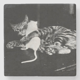 Surprising Friendship - Cat Minnie and Mike Mouse Stone Coaster