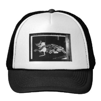 Surprising Friendship - Cat Minnie and Mike Mouse Trucker Hat