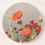 Surrea Red Poppies Drink Coaster