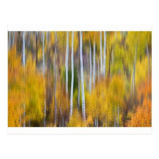 Surreal Aspen Tree Magic Abstract Art Postcards