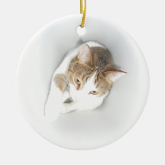 Surreal Cat in the Light Christmas Ornaments