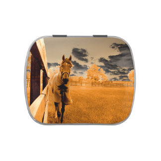 surreal horse walking down fence orange sky candy tin