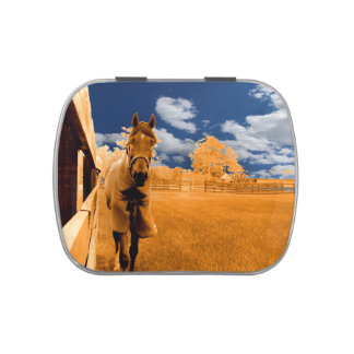 surreal horse walking fence orange blue sky jelly belly candy tin