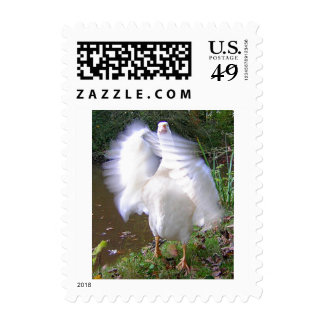 Surreal Motion Blurred Picture Of White Goose Flap Postage