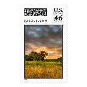 Surreal Sunrise-Stamp-Large-Vertical stamp