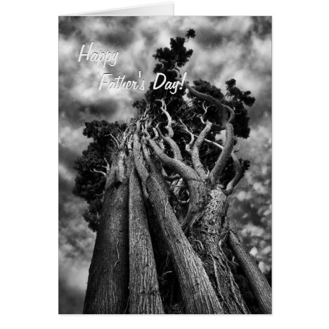 Surreal Trees Father's Day fine art - Speedster! Card