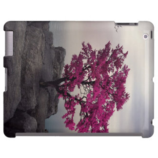 Surrealism iPad case
